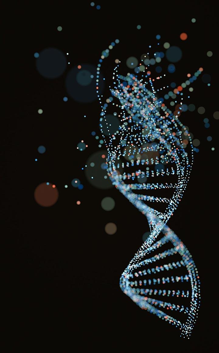 2000's - DNA